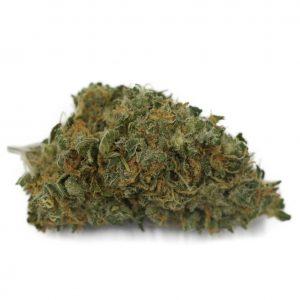 Cannabis Club BC - Buy Weed Online - Flower - Sativa - AK47